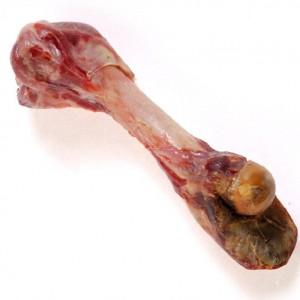 osso-femore